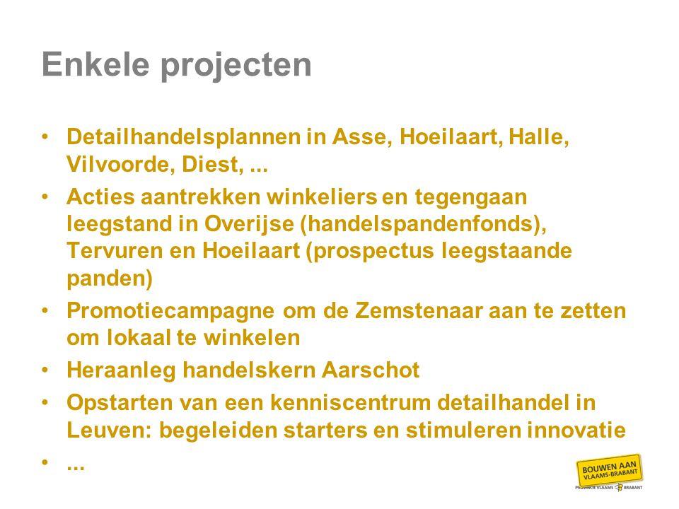 Enkele projecten Detailhandelsplannen in Asse, Hoeilaart, Halle, Vilvoorde, Diest,...