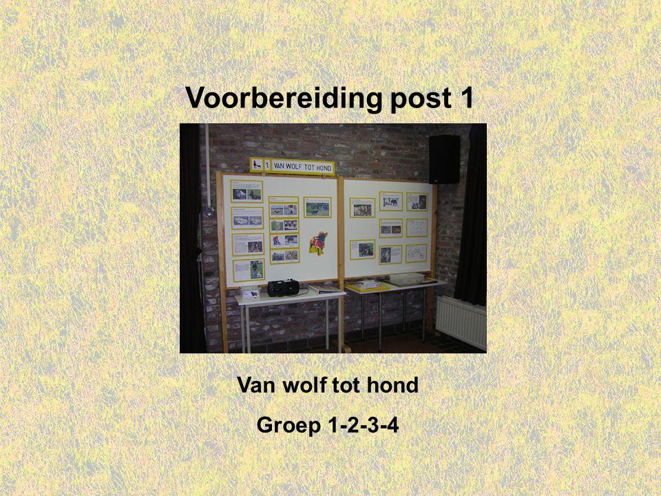 Voorbereiding post 1 Van wolf tot hond Groep 1-2-3-4