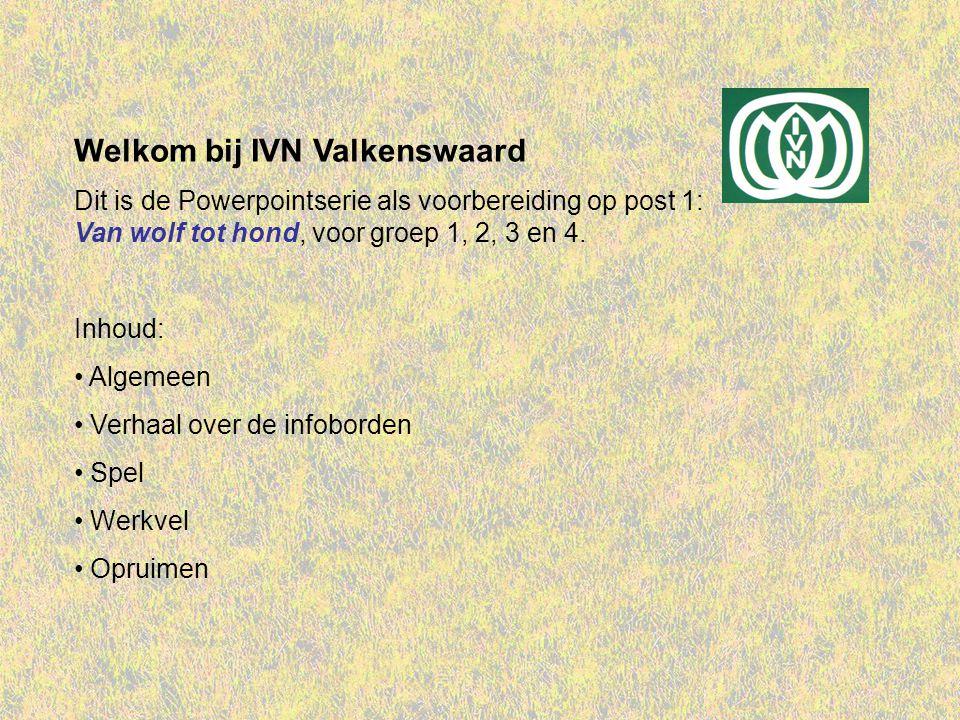 Welkom bij IVN Valkenswaard Dit is de Powerpointserie als voorbereiding op post 1: Van wolf tot hond, voor groep 1, 2, 3 en 4.