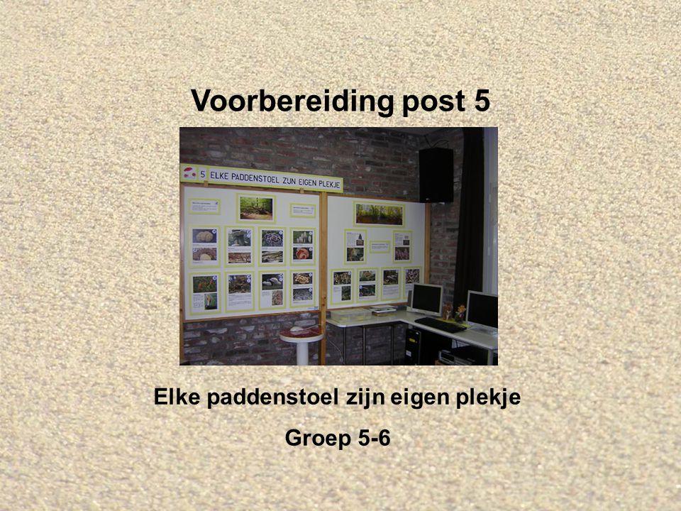 Voorbereiding post 5 Elke paddenstoel zijn eigen plekje Groep 5-6