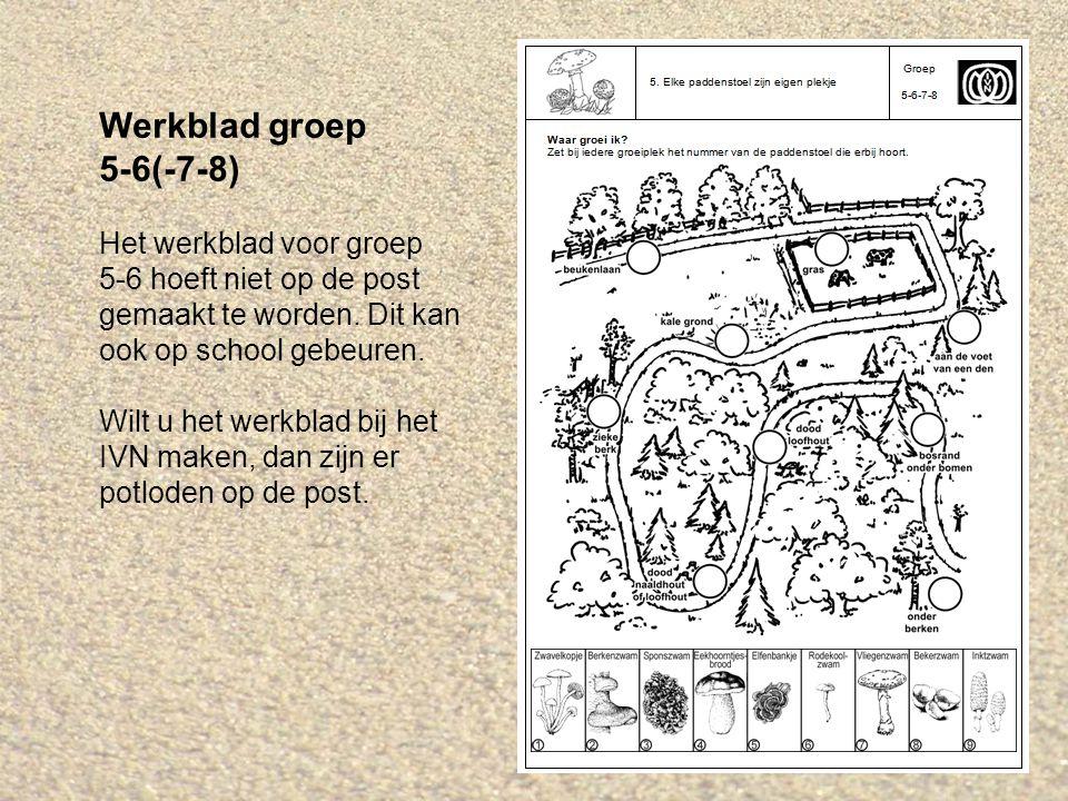 Werkblad groep 5-6(-7-8) Het werkblad voor groep 5-6 hoeft niet op de post gemaakt te worden.