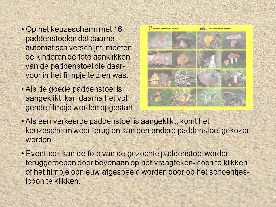 Op het keuzescherm met 16 paddenstoelen dat daarna automatisch verschijnt, moeten de kinderen de foto aanklikken van de paddenstoel die daar- voor in het filmpje te zien was.