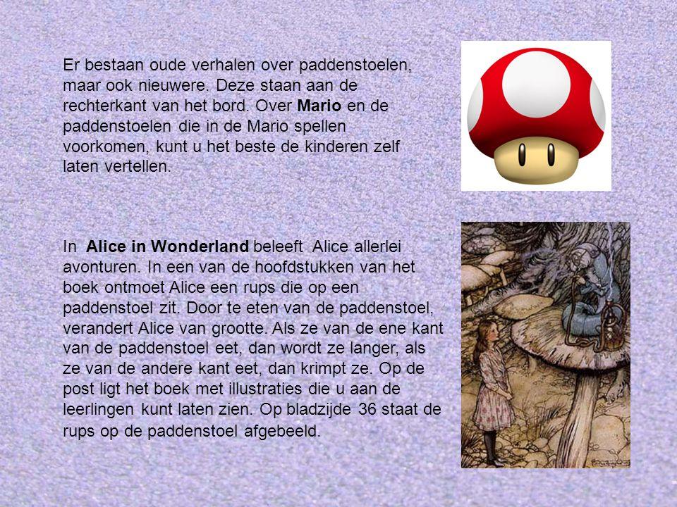 In Alice in Wonderland beleeft Alice allerlei avonturen.