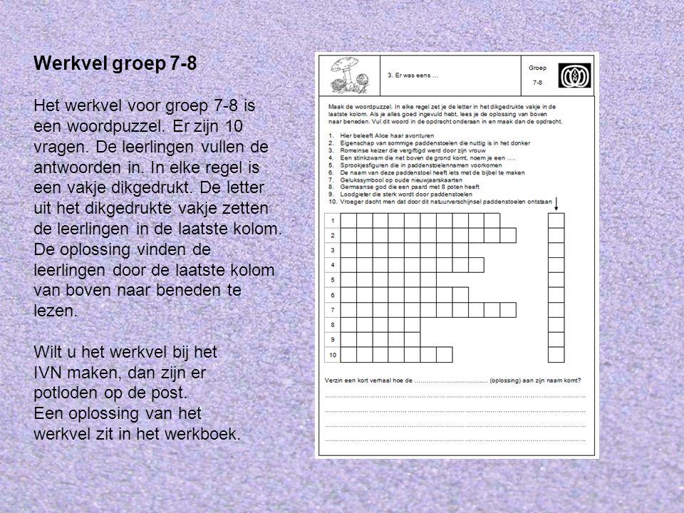 Werkvel groep 7-8 Het werkvel voor groep 7-8 is een woordpuzzel.