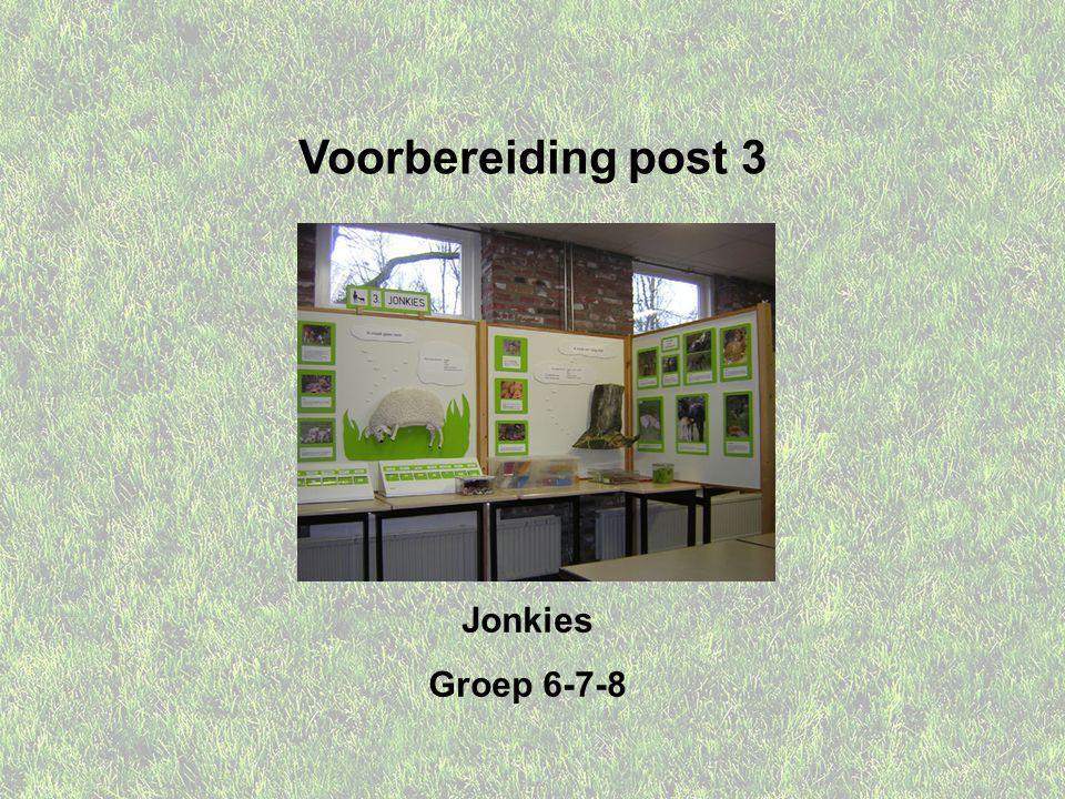 Voorbereiding post 3 Jonkies Groep 6-7-8