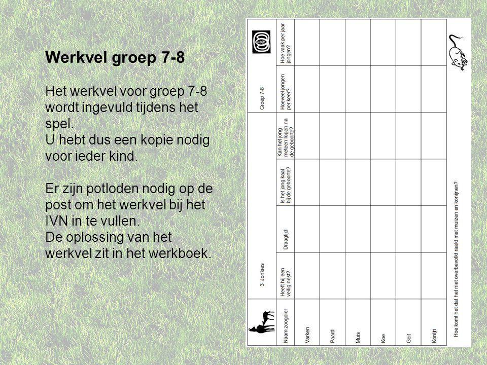 Werkvel groep 7-8 Het werkvel voor groep 7-8 wordt ingevuld tijdens het spel.