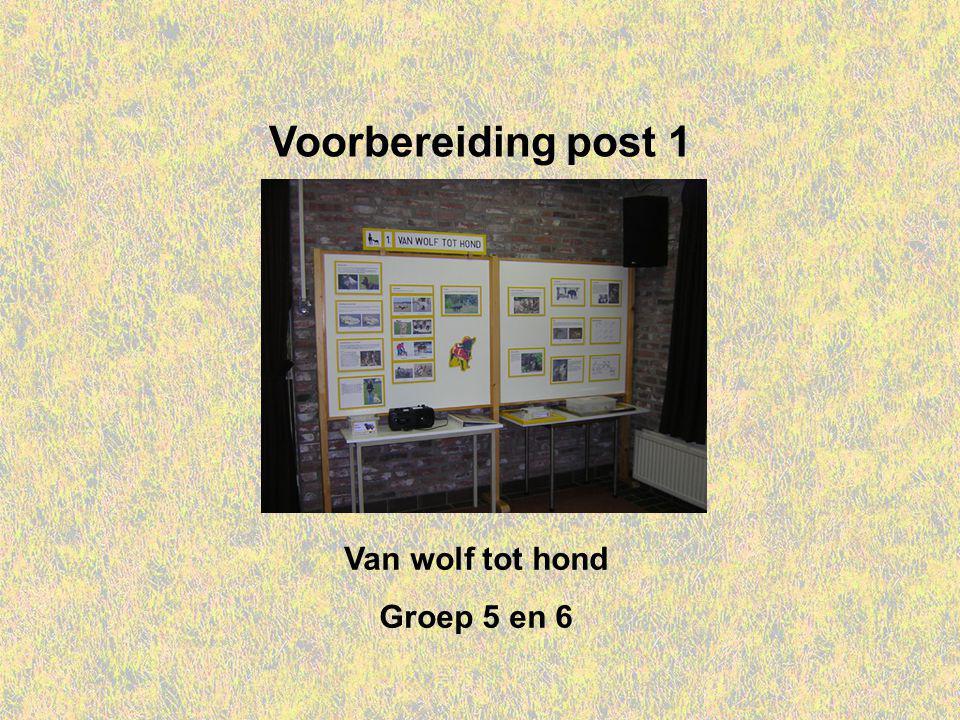 Welkom bij IVN Valkenswaard Dit is de Powerpointserie als voorbereiding op post 1: Van wolf tot hond, voor groep 5 en 6.
