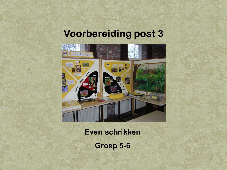Voorbereiding post 3 Even schrikken Groep 5-6