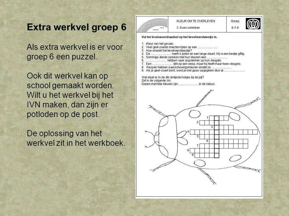 Extra werkvel groep 6 Als extra werkvel is er voor groep 6 een puzzel.