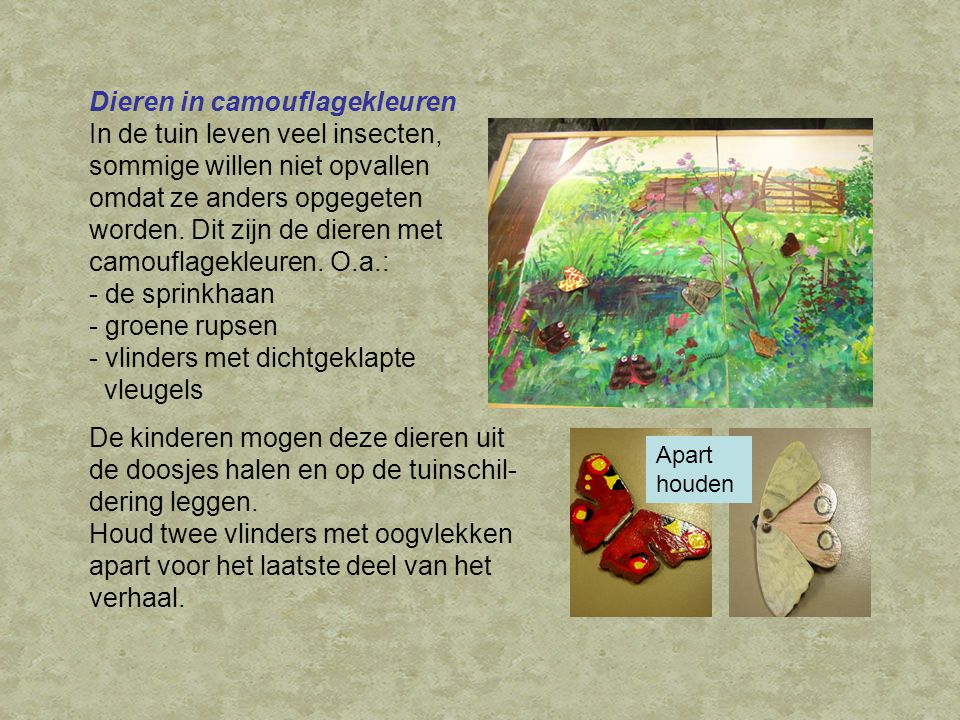 Dieren in camouflagekleuren In de tuin leven veel insecten, sommige willen niet opvallen omdat ze anders opgegeten worden.