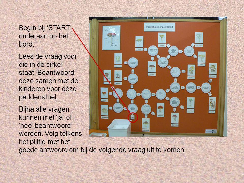 . Begin bij 'START' onderaan op het bord. Lees de vraag voor die in de cirkel staat. Beantwoord deze samen met de kinderen voor déze paddenstoel. Bijn