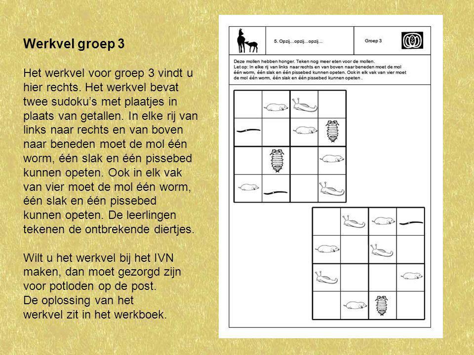 Werkvel groep 3 Het werkvel voor groep 3 vindt u hier rechts. Het werkvel bevat twee sudoku's met plaatjes in plaats van getallen. In elke rij van lin