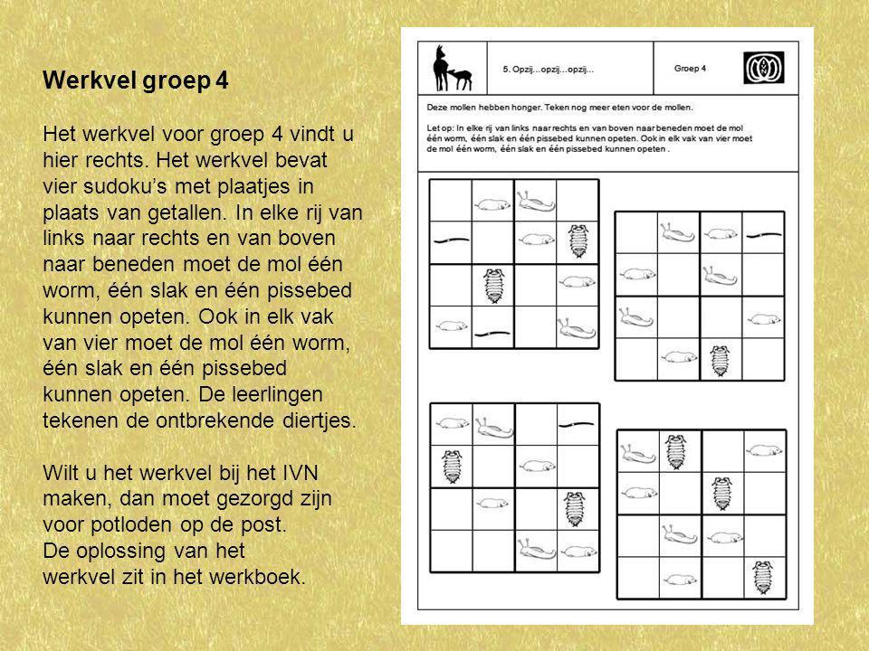 Werkvel groep 4 Het werkvel voor groep 4 vindt u hier rechts. Het werkvel bevat vier sudoku's met plaatjes in plaats van getallen. In elke rij van lin