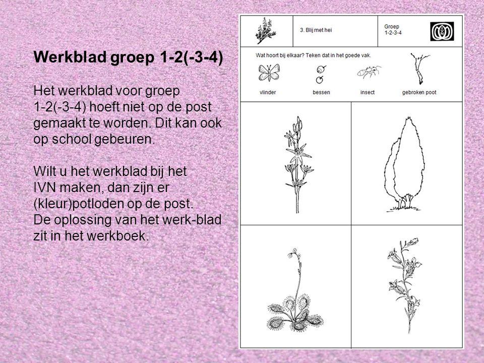 Werkblad groep 1-2(-3-4) Het werkblad voor groep 1-2(-3-4) hoeft niet op de post gemaakt te worden.