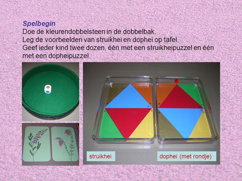 Spelbegin Doe de kleurendobbelsteen in de dobbelbak.
