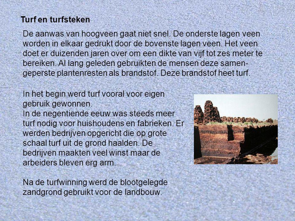 In het begin werd turf vooral voor eigen gebruik gewonnen. In de negentiende eeuw was steeds meer turf nodig voor huishoudens en fabrieken. Er werden