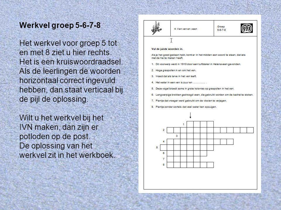 Werkvel groep 5-6-7-8 Het werkvel voor groep 5 tot en met 8 ziet u hier rechts. Het is een kruiswoordraadsel. Als de leerlingen de woorden horizontaal