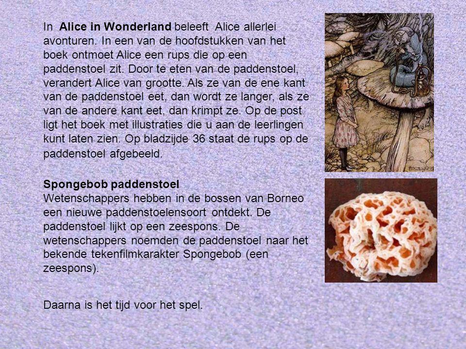 In Alice in Wonderland beleeft Alice allerlei avonturen. In een van de hoofdstukken van het boek ontmoet Alice een rups die op een paddenstoel zit. Do