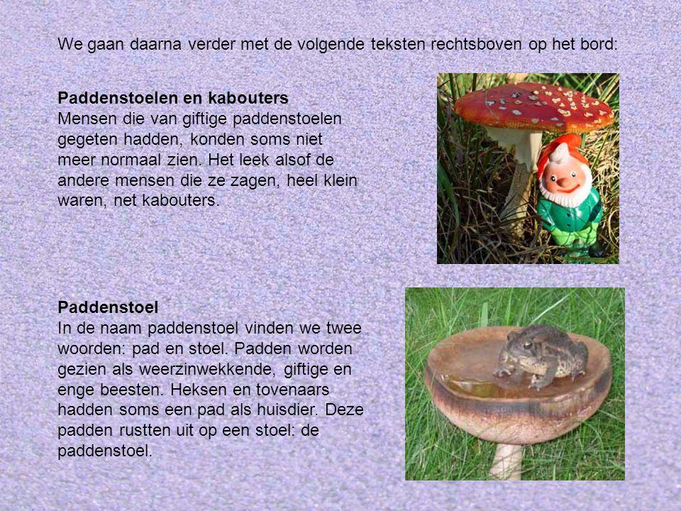 Paddenstoelen en kabouters Mensen die van giftige paddenstoelen gegeten hadden, konden soms niet meer normaal zien. Het leek alsof de andere mensen di