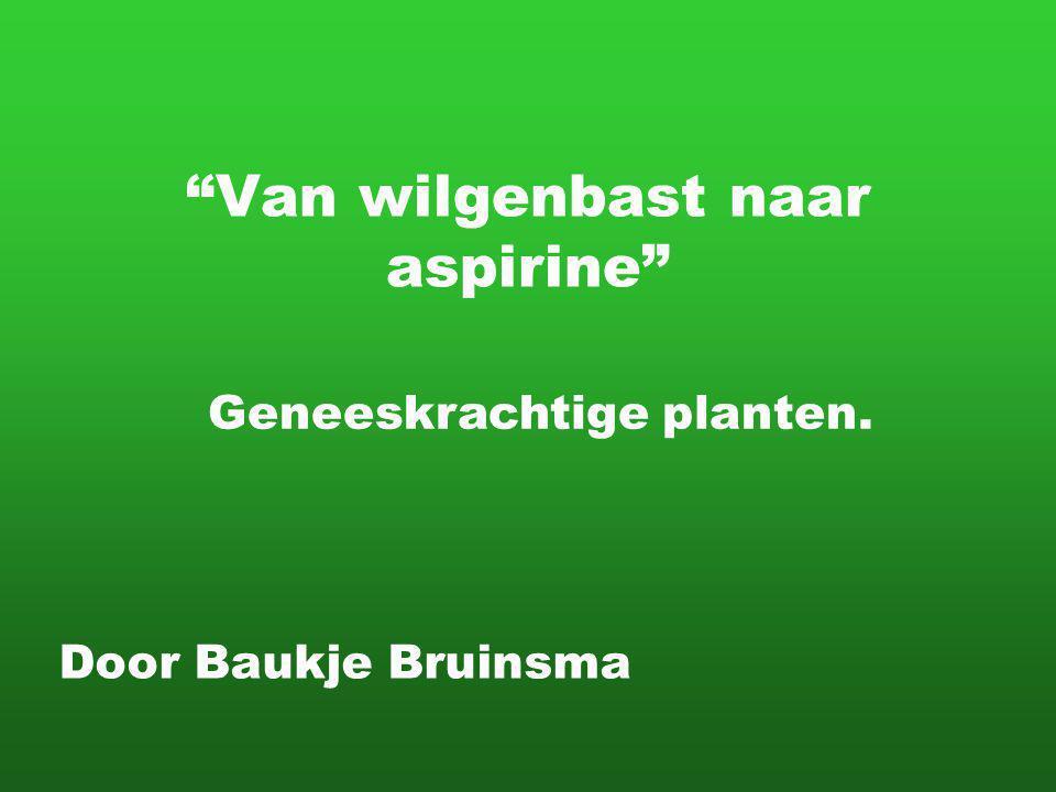Van wilgenbast naar aspirine Door Baukje Bruinsma Geneeskrachtige planten.