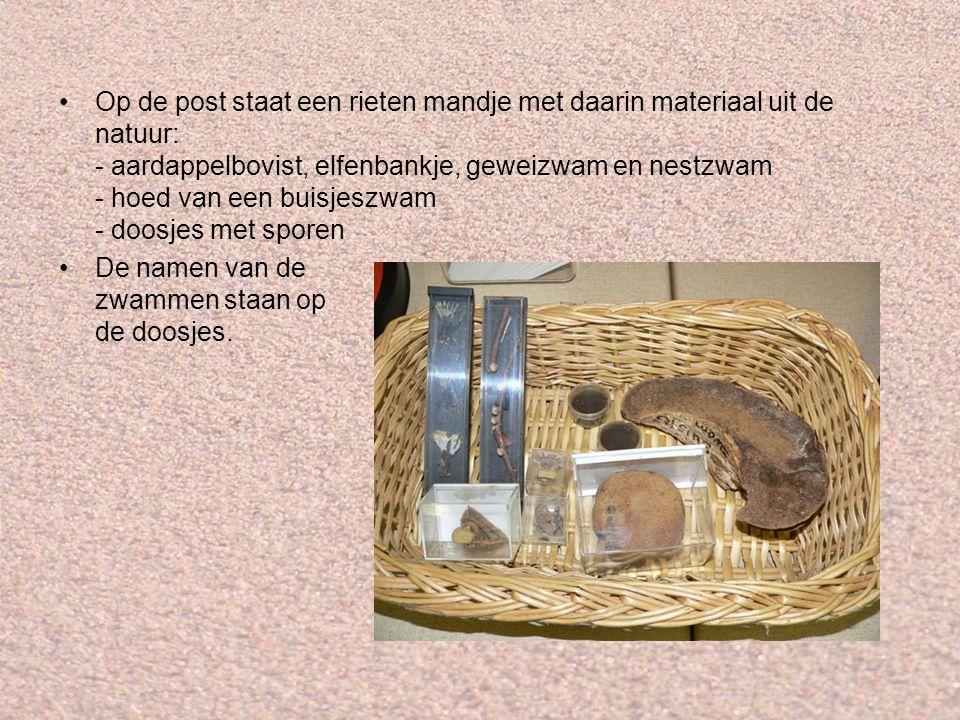 Op de post staat een rieten mandje met daarin materiaal uit de natuur: - aardappelbovist, elfenbankje, geweizwam en nestzwam - hoed van een buisjeszwa