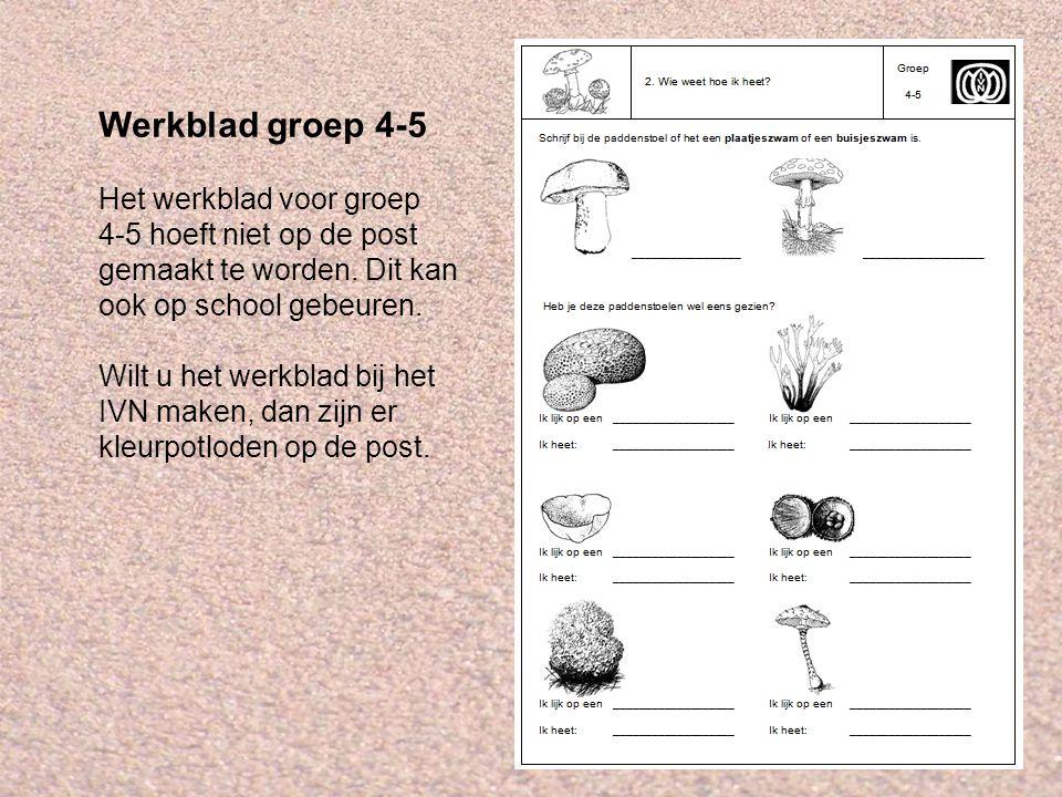 Werkblad groep 4-5 Het werkblad voor groep 4-5 hoeft niet op de post gemaakt te worden. Dit kan ook op school gebeuren. Wilt u het werkblad bij het IV