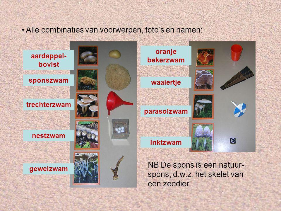 Alle combinaties van voorwerpen, foto's en namen: sponszwam trechterzwam nestzwam geweizwam aardappel- bovist inktzwam parasolzwam oranje bekerzwam wa