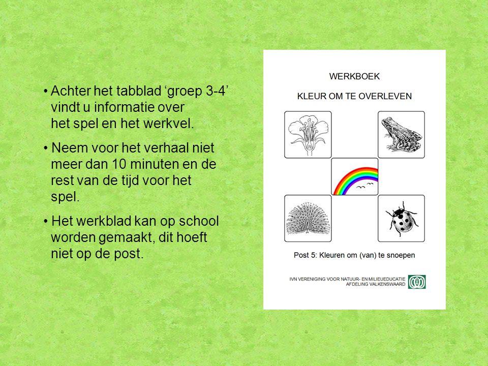 Achter het tabblad 'groep 3-4' vindt u informatie over het spel en het werkvel.