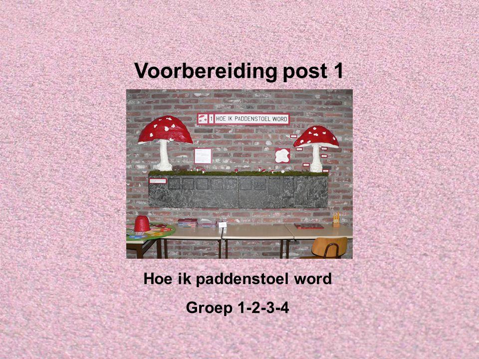 Voorbereiding post 1 Hoe ik paddenstoel word Groep 1-2-3-4