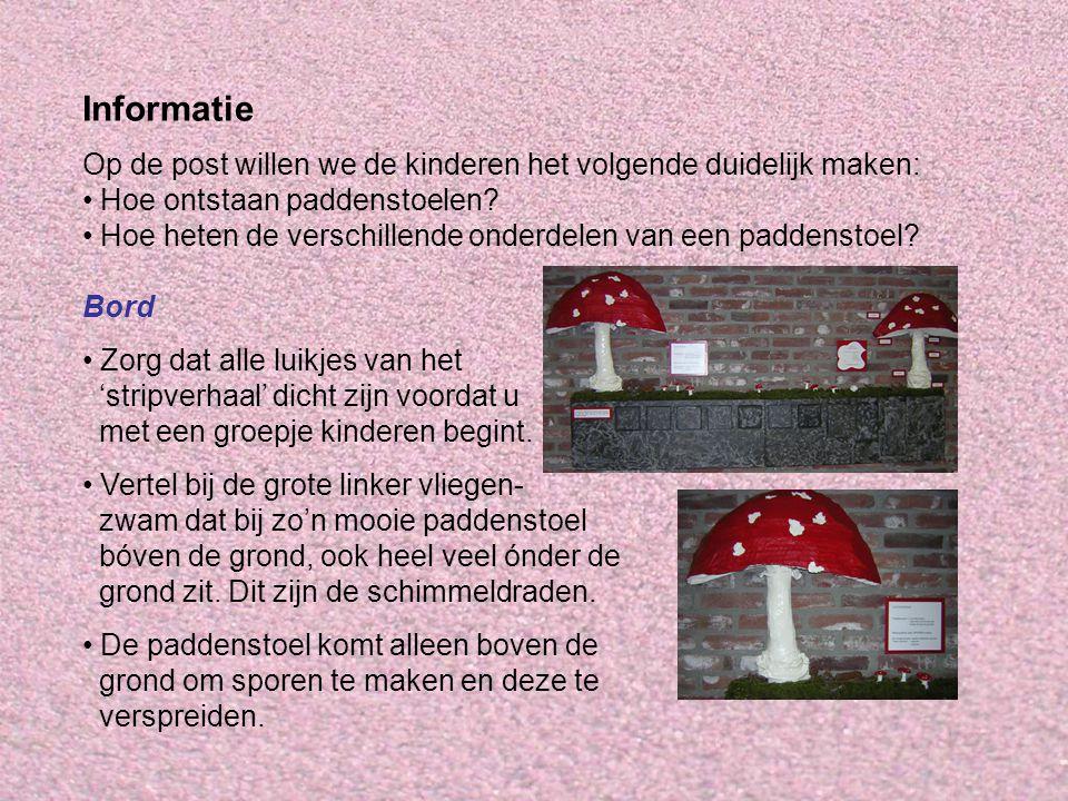 Informatie Op de post willen we de kinderen het volgende duidelijk maken: Hoe ontstaan paddenstoelen? Hoe heten de verschillende onderdelen van een pa