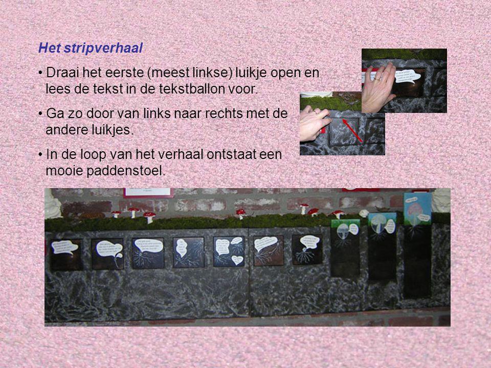 Het stripverhaal Draai het eerste (meest linkse) luikje open en lees de tekst in de tekstballon voor. Ga zo door van links naar rechts met de andere l
