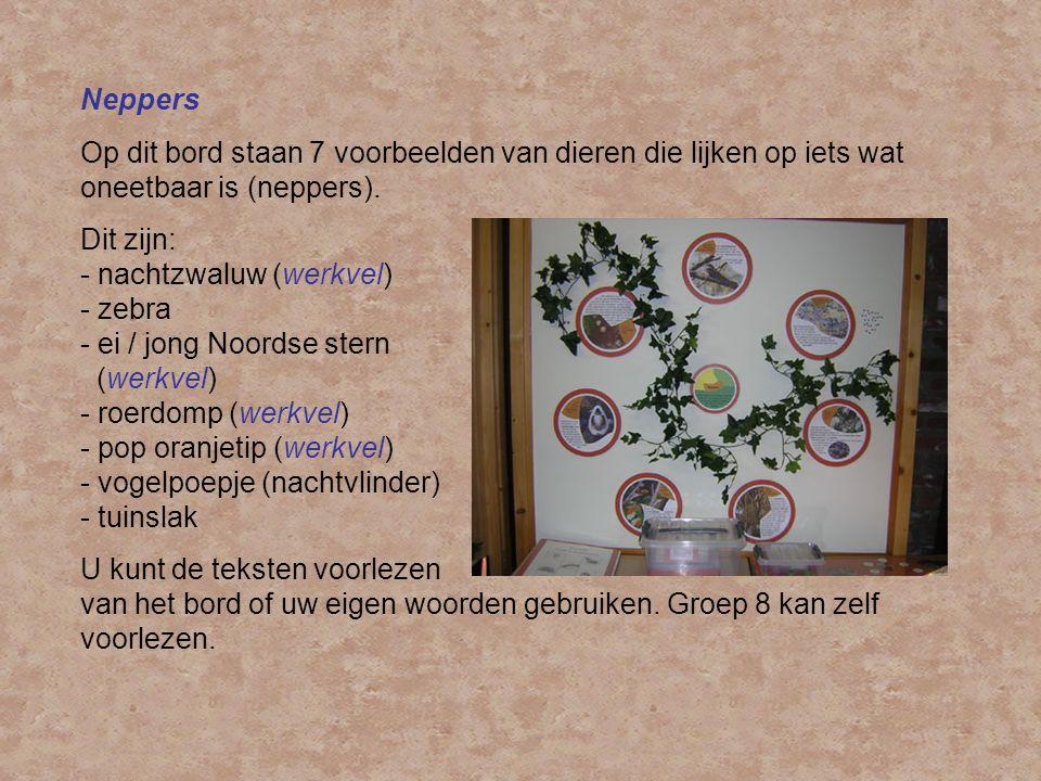 Neppers Op dit bord staan 7 voorbeelden van dieren die lijken op iets wat oneetbaar is (neppers).