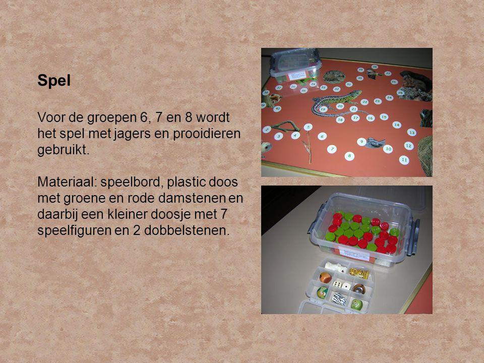 Spel Voor de groepen 6, 7 en 8 wordt het spel met jagers en prooidieren gebruikt. Materiaal: speelbord, plastic doos met groene en rode damstenen en d