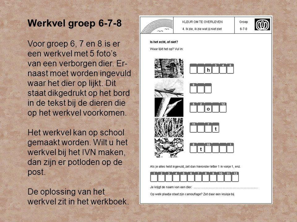 Werkvel groep 6-7-8 Voor groep 6, 7 en 8 is er een werkvel met 5 foto's van een verborgen dier. Er- naast moet worden ingevuld waar het dier op lijkt.