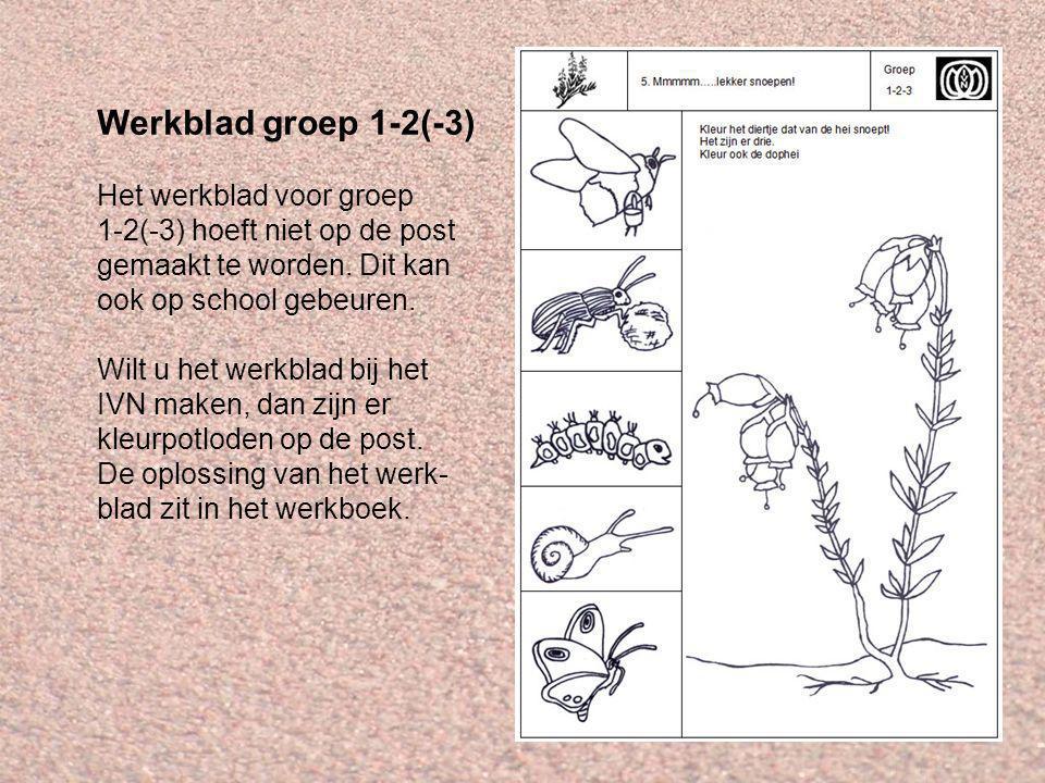 Werkblad groep 1-2(-3) Het werkblad voor groep 1-2(-3) hoeft niet op de post gemaakt te worden.