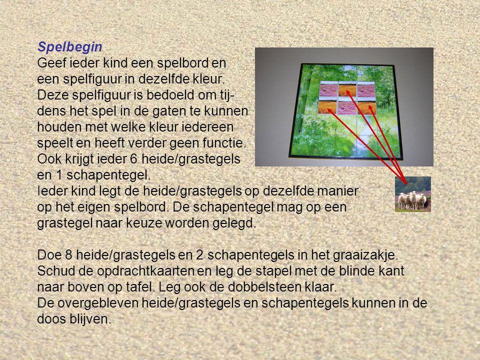 Spelbegin Geef ieder kind een spelbord en een spelfiguur in dezelfde kleur.