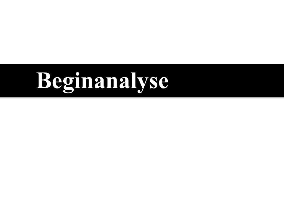 Beginanalyse