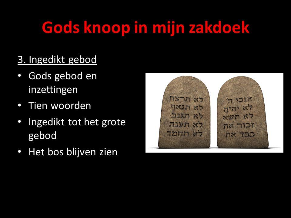 Gods knoop in mijn zakdoek 3. Ingedikt gebod Gods gebod en inzettingen Tien woorden Ingedikt tot het grote gebod Het bos blijven zien