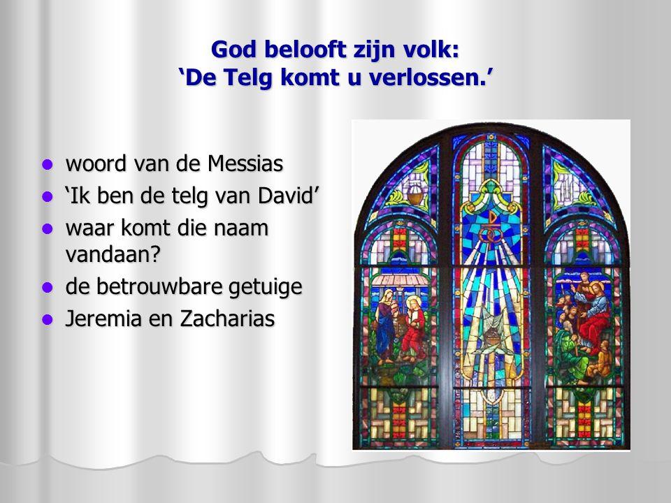 God belooft zijn volk: 'De Telg komt u verlossen.' woord van de Messias woord van de Messias 'Ik ben de telg van David' 'Ik ben de telg van David' waa