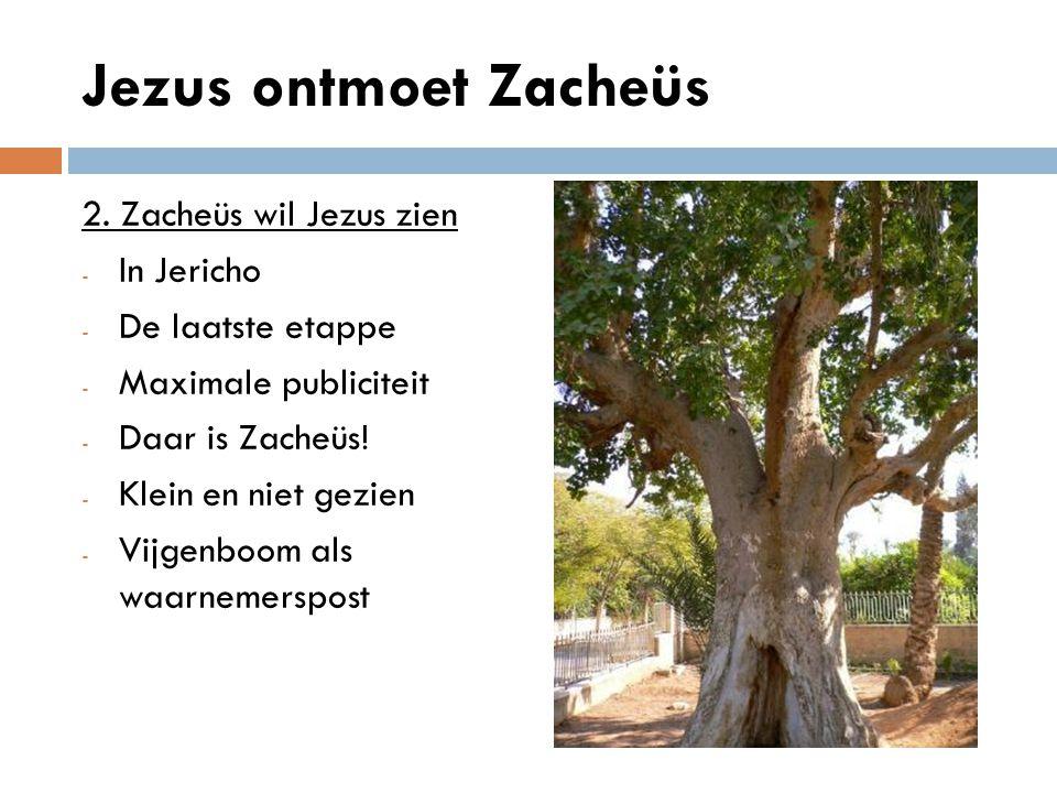 Jezus ontmoet Zacheüs 3.