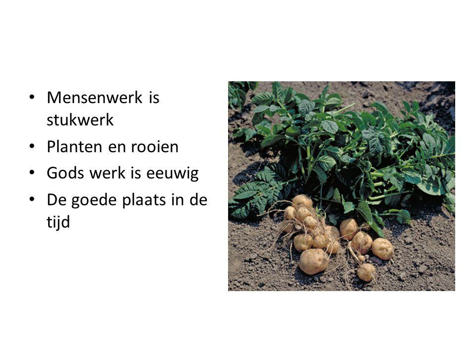 Mensenwerk is stukwerk Planten en rooien Gods werk is eeuwig De goede plaats in de tijd