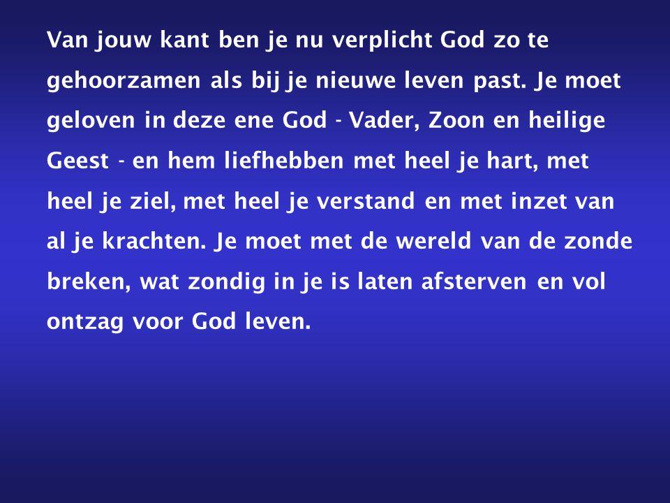 Als je uit zwakheid nog zonden doet, hoef je toch aan Gods genade niet te twijfelen.