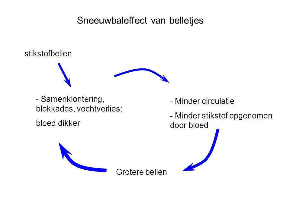 Sneeuwbaleffect van belletjes - Samenklontering, blokkades, vochtverlies: bloed dikker - Minder circulatie - Minder stikstof opgenomen door bloed Grot