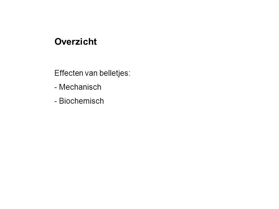 Overzicht Effecten van belletjes: - Mechanisch - Biochemisch