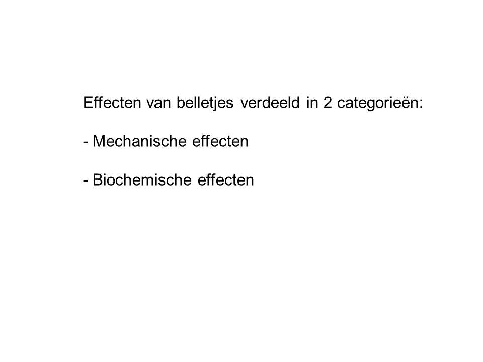 Mechanische effecten: Belletjes blokkeren bloedvaten Doorbloeding neemt af: zuurstof tekort weefsel