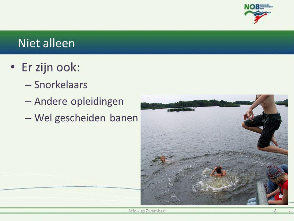 Niet alleen Er zijn ook: – Snorkelaars – Andere opleidingen – Wel gescheiden banen Mini-les Zwembad8