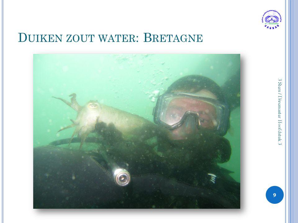D UIKEN ZOUT WATER : B RETAGNE 9 3 Sters / Divemaster Hoofdstuk 3