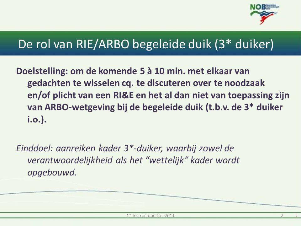 De rol van RIE/ARBO begeleide duik (3* duiker) Doelstelling: om de komende 5 à 10 min. met elkaar van gedachten te wisselen cq. te discuteren over te