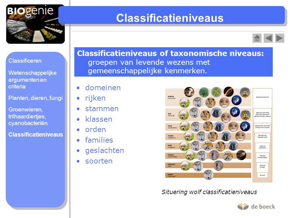 Classificatieniveaus domeinen rijken stammen klassen orden families geslachten soorten Classificatieniveaus of taxonomische niveaus: groepen van leven