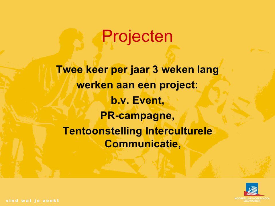 Projecten Twee keer per jaar 3 weken lang werken aan een project: b.v.